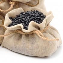 Haricots de semence