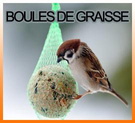 Blocs et boules de graisse pour les oiseaux de la nature Carcassonne