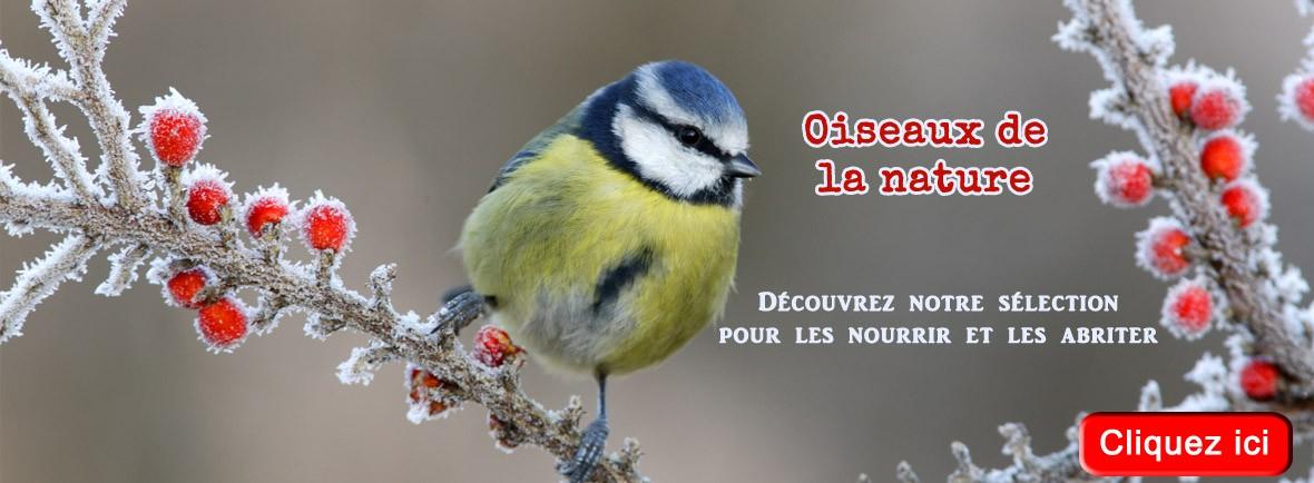 Grande sélection de produits pour les oiseaux de la nature à Carcassonne