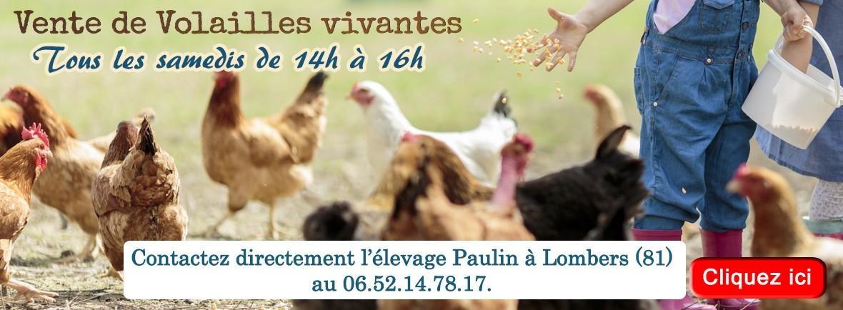 Tous les samedis après-midi, venez acheter vos poules pondeuses, pintades et autres volailles à La Halle aux Grains !