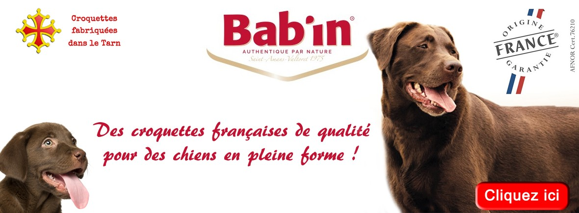 Croquettes pour chiens fabriquées en France. Grande qualité, petit prix. Idéales pour la santé de vos chiens
