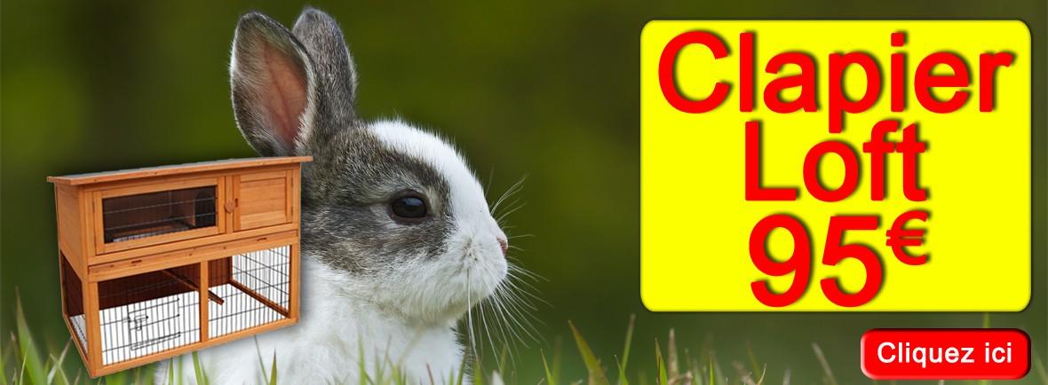 Un grand clapier à étage pour votre lapin